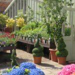 garden centres york